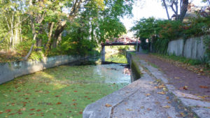 New Hope Canal