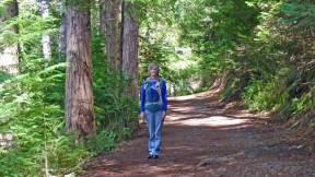 Hiking trail at Hanmer Springs