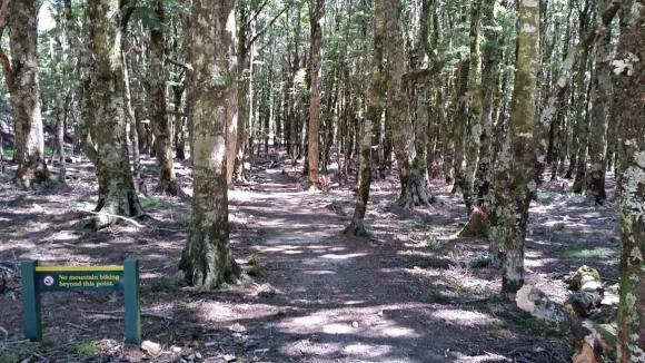 Harwoods Hole Track