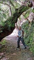 Karamea New Zealand - Hike to Limestone Arch