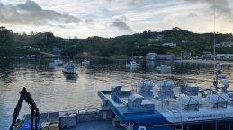Stewart Island harbour at sunrise