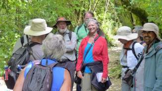 Guided tour group at Zealandia in Wellington