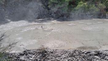 Waiotapu Thermal Park steaming bubbling mud pool