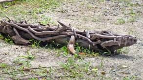 Driftwood crocodile sculpture
