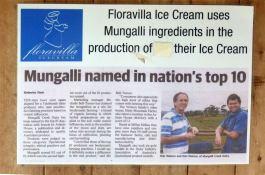 Mungalli Floravilla ice cream