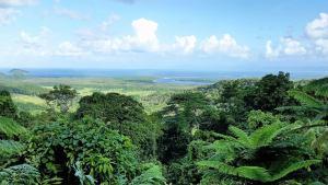 Walu Wugirriga view from Mount Alexandra lookout