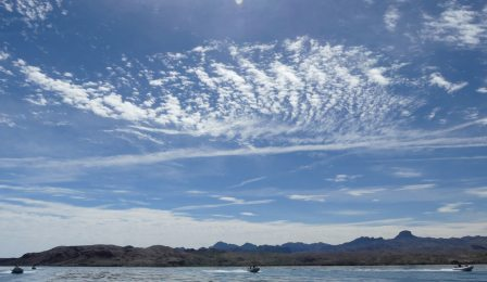 Lake Havasu Rubba Duck Safari - blue sky