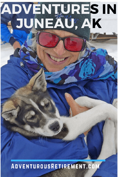 Sled dog puppy with Wendy