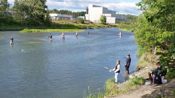 10-day-self-guided-alaska-kenai-peninsula-itinerary-ship-creek-anchorage-salmon-fishing