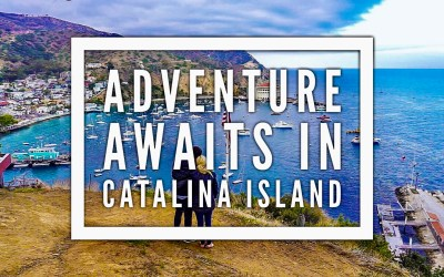 Adventure Awaits in Catalina Island
