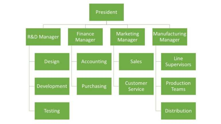 Functional-Organizational-Chart-Structure