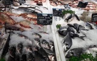 Cum alegem peştele si salata de icre