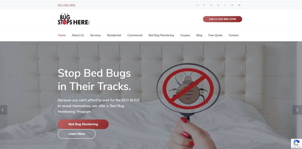 The Bug Stops Here Website Design by Advertising Is Simple in Delaware