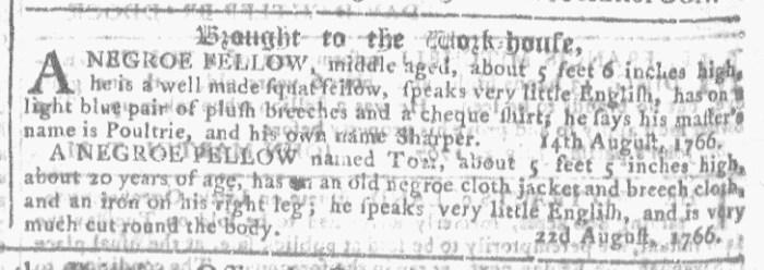 Jul 15 - Georgia Gazette Slavery 4