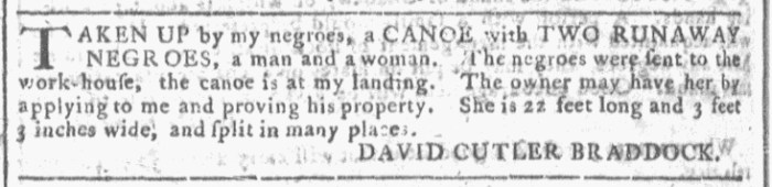 Jul 29 - Georgia Gazette Slavery 5