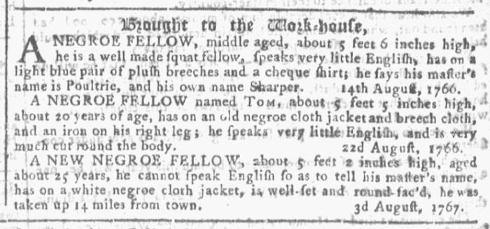 Aug 12 - Georgia Gazette Slavery 7