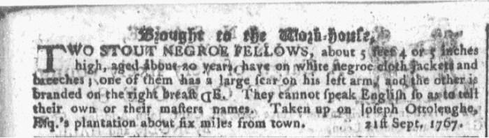 Sep 23 - Georgia Gazette Slavery 2