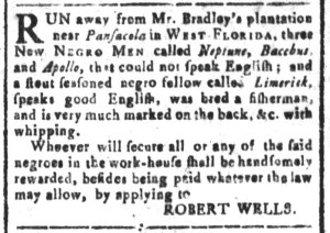 Jul 29 - South Carolina and American General Gazette Slavery 4