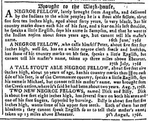 Aug 17 - Georgia Gazette Slavery 12
