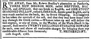 Aug 24 - Georgia Gazette Slavery 3