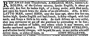 Aug 24 - Georgia Gazette Slavery 4