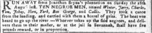 Aug 31 - Georgia Gazette Slavery 1
