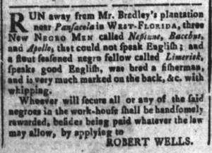 Sep 23 - South-Carolina and American General Gazette Slavery 3