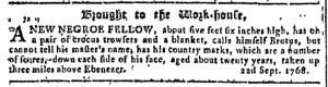Sep 28 - Georgia Gazette Slavery 1