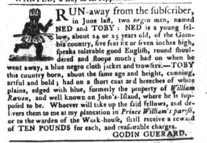 Nov 1 - South-Carolina Gazette and Country Journal Supplement Slavery 3