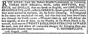 Oct 26 - Georgia Gazette Slavery 8