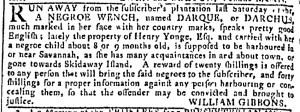May 10 - Georgia Gazette Slavery 1