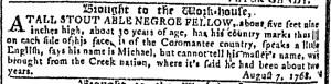 May 31 - Georgia Gazette Slavery 8