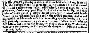 Jun 7 - Georgia Gazette Slavery 2