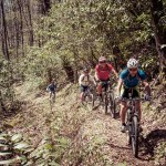 Boone Biking   Rides + Trails
