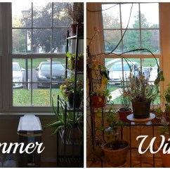 Kitchen Greenhouse Window Small Appliances Bringing The Garden Indoors Advice From Herb Lady