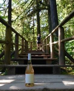 Wine & hiking