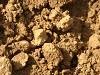 SandstoneClay