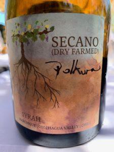 Colchagua valley wine chile