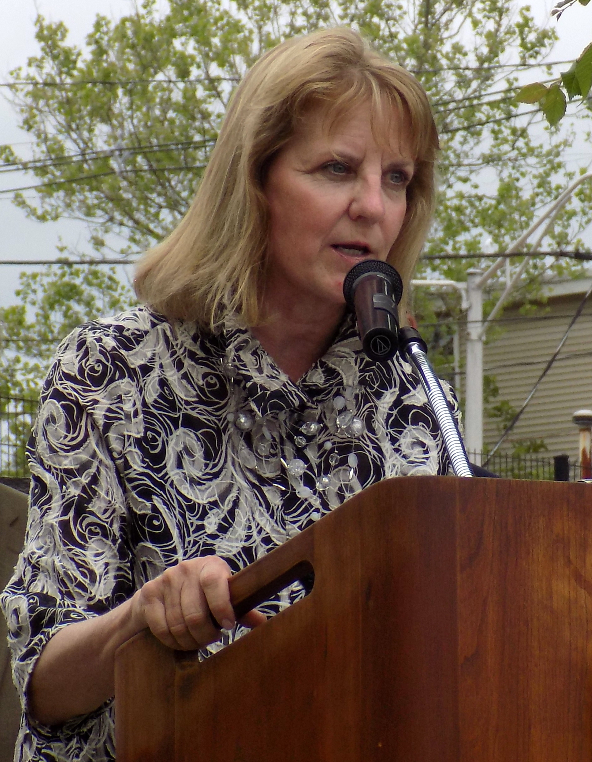State Sen. Joan Lovely was on hand to help present two state grants to the city totaling $467,616 for Municipal Vulnerability Preparedness at East End Peabody Veterans Memorial Park on June 1.
