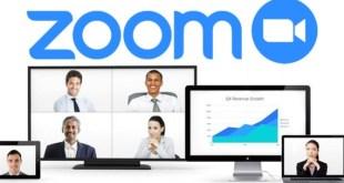 Fake Zoom Domains