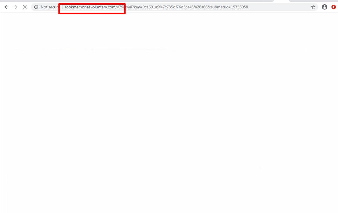 What is Rookmemorizevoluntary.com?