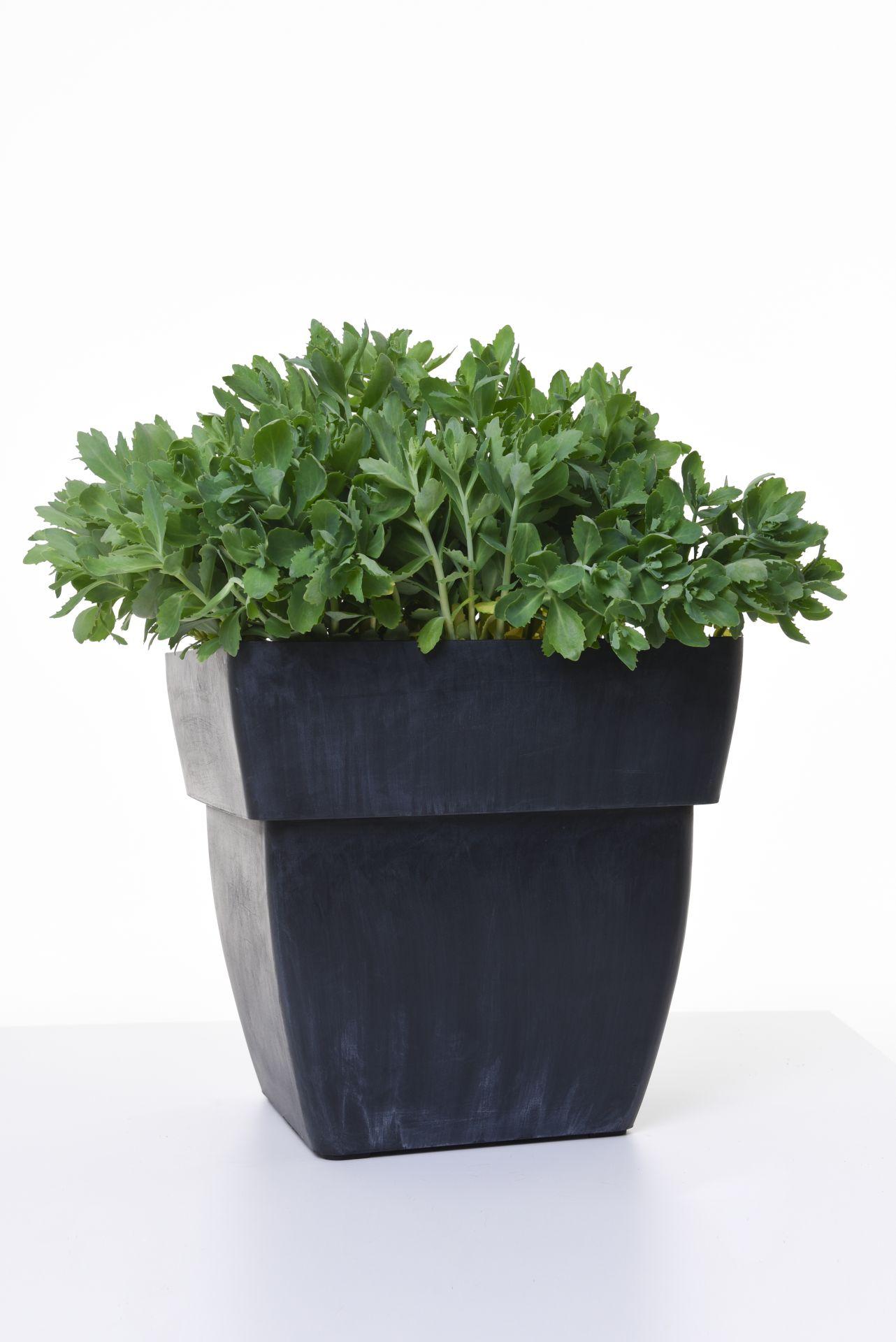 Grosse Pflanzkubel Kunststoff Blumentopf Pflanztopf Kunststoff