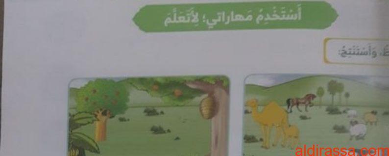 الحل لدرس أحب مخلوقات ربي تربية إسلامية الصف الأول الفصل الثالث