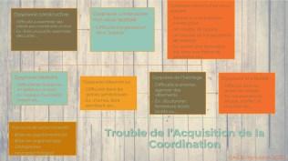 Trouble de l'Acquisition de la Coordination 2--