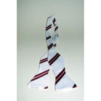 St. Catharine's College summer bow tie