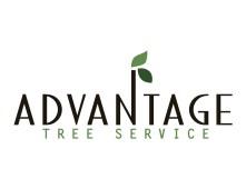 AdvantageTreeService
