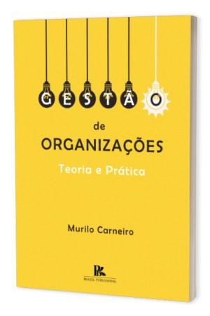 Gestão de organizações: teoria e prática