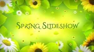 Spring Slideshow