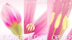 Flower Bloom Logo