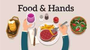 Food & Hands Explainer